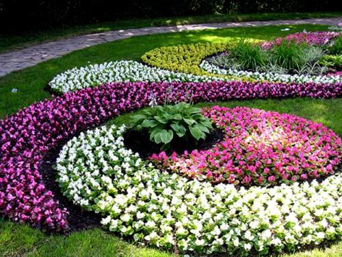 Красивы цветы для клумб своими руками на даче фото