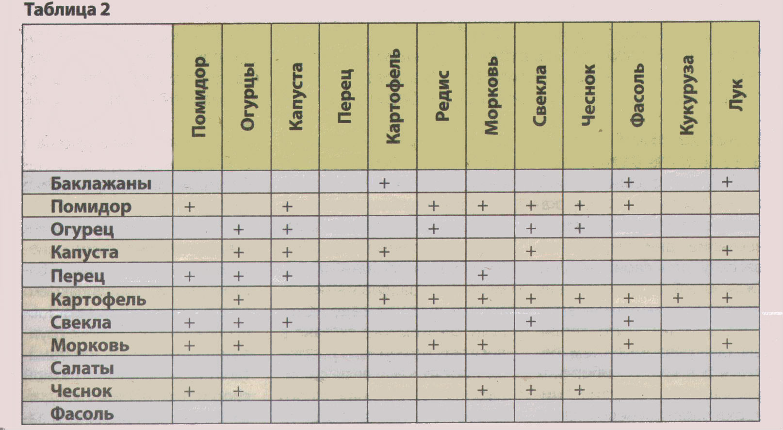 Схемы совместимых посадок растений