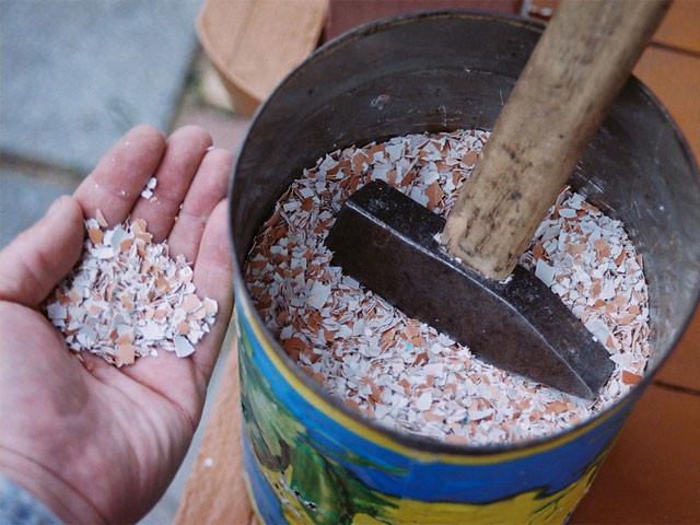 Приготовить удобрение в домашних условиях 88