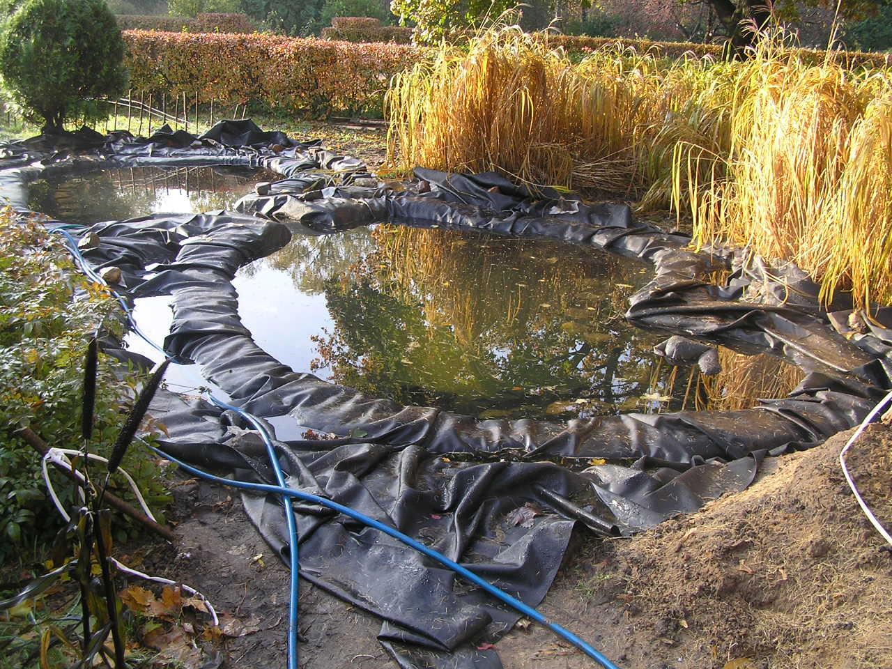 Фото дачных водоемов