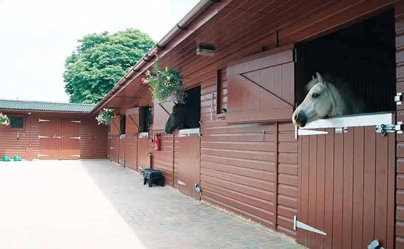 Фото конюшни своими руками