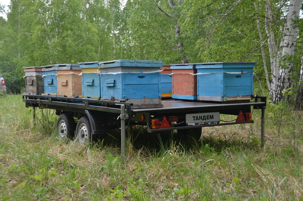Прицеп для перевозки пчёл своими руками видео