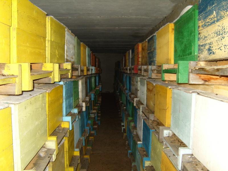 Омшаник для пчел как сделать