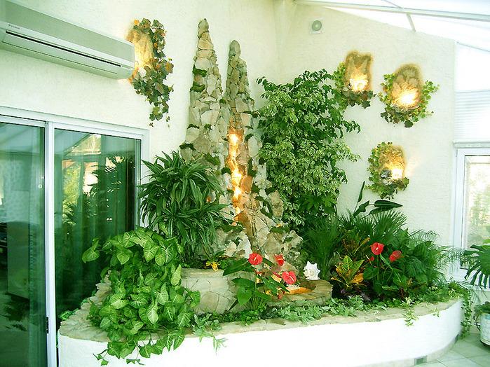 комнатных цветков