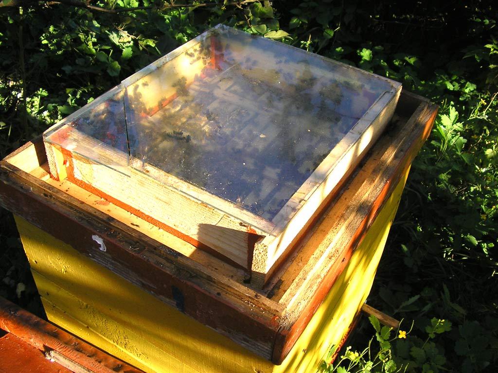 Кормушка для пчёл своими руками