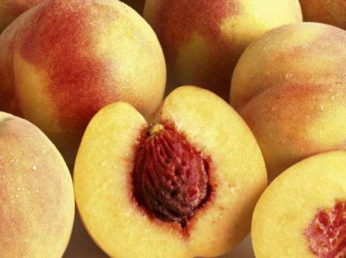 Как выращивать персики в домашних условиях