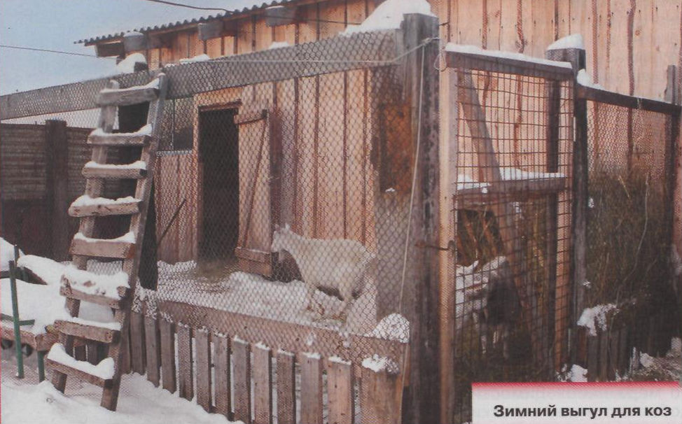 Схема помещения для коз