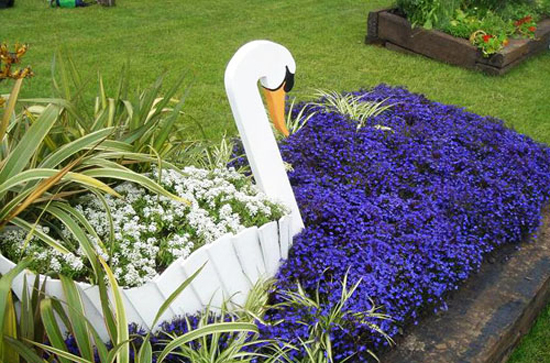 Дизайн с лобелией в саду