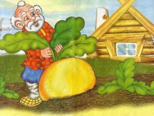 Весенняя обрезка винограда схема рисунки 51