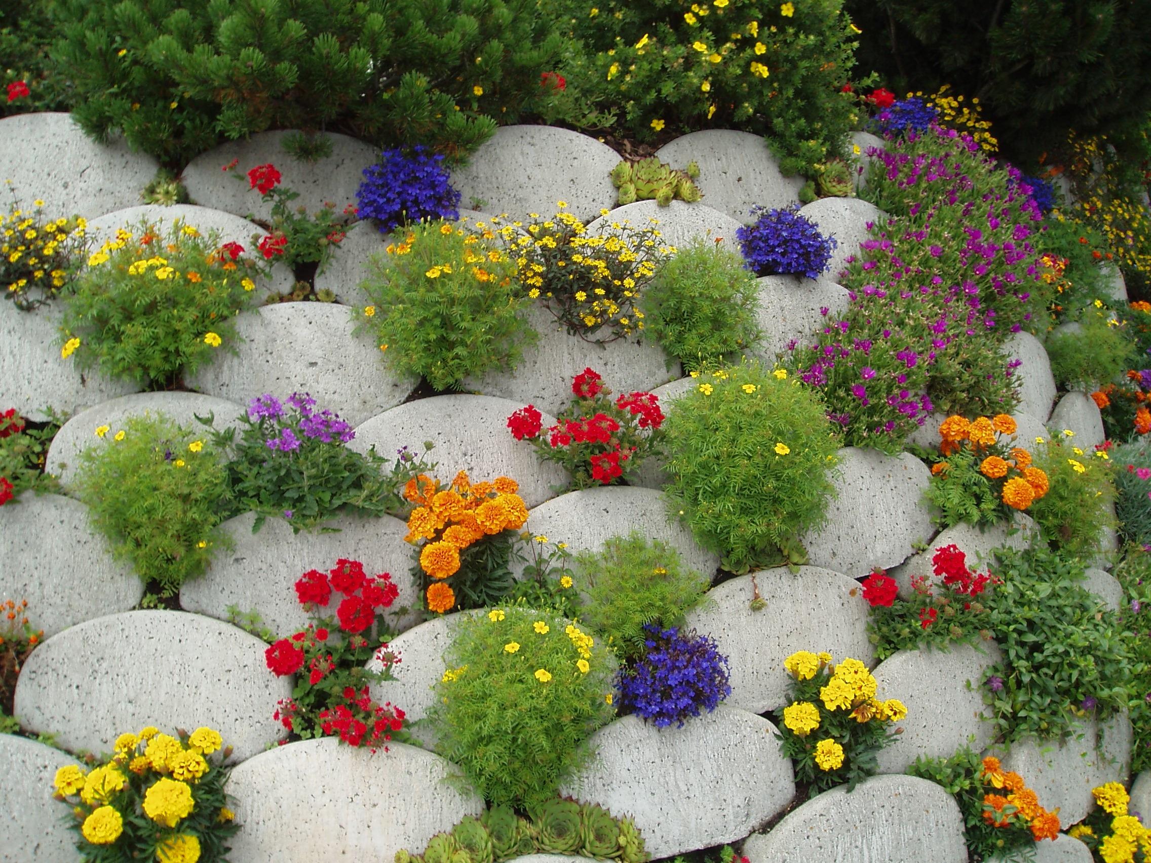 Клумбы и цветники на даче своими руками из подручных материалов